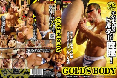 PRZ87 Gold's Body